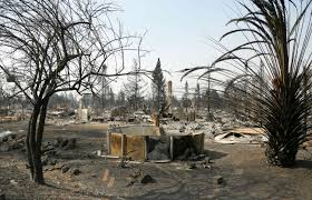 California Wildfire Cat by California Videos At Abc News Video Archive At Abcnews Com