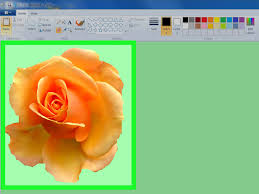 Color Green How To Change An Image Background In Ms Paint Green Screen