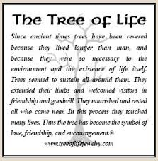 tree of means a lot to me holistic