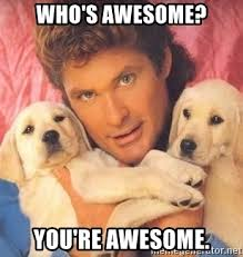 You Are Awesome Meme - who s awesome you re awesome david hasselhoff puppy meme