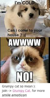Mean Kitty Meme - 25 best memes about no grumpy cat no grumpy cat memes