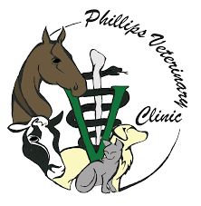 phillips veterinary clinic inc phillips wi how to videos