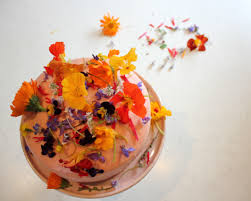 edible flowers for sale edible flowers for cakes fantastical fruit roll edible flowers