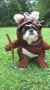 Small Puppy Halloween Costumes 25 Ewok Dog Costume Ideas Small Dog Costumes