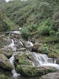 Rock Garden Waterfall Rock Garden Darjeeling