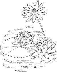 lily pad printable coloring pages enjoy coloring kids art