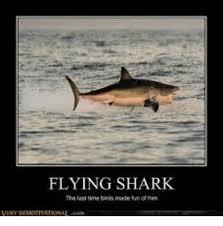 Shark Meme - flying shark the last time brds made mun han meme on me me