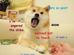 Funny Doge Memes - 82 best doge meme images on pinterest doge meme ha ha and funny stuff