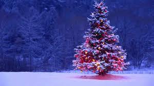 purple christmas tree wallpaper cheminee website