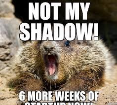 Groundhog Meme - groundhog day meme weknowmemes generator