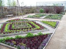 Vegetables Garden Ideas 229 Best Vegetable Garden Ideas Images On Pinterest Growing