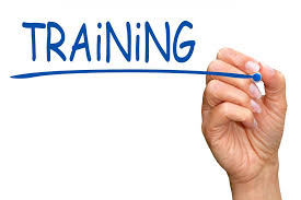 are you ensuring employee success with training opportunities