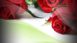 Delivery Flower Service - online flower delivery in chandigarh service by way2flowers youtube