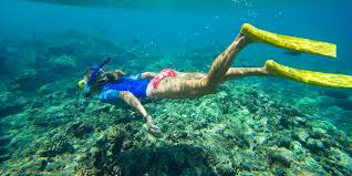 West Virginia snorkeling images Snorkeling in hawaii best underwater spots to look for nemo jpg