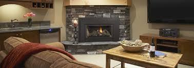 e21 small gas insert gas fireplace inserts regency fireplace