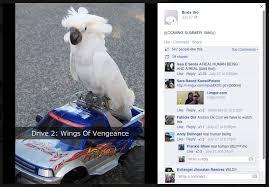 La Meme - inside the inscrutable world of weird facebook