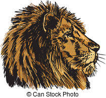 eps vectors of hand drawn sketch of a lion looking intently at the