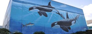 south padre island wyland s whaling wall south padre island
