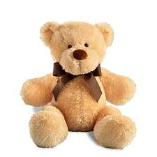 teddy delivery send a teddy gifts delivered to your ft lauderdale doorstep