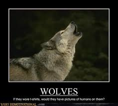 3 Wolf Moon Meme - wolves are very stylish very demotivational demotivational