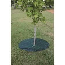 dewitt tree mat circles gempler s