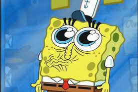 Spongebob Wallet Meme - obtuve bastante sensible test pinterest meme