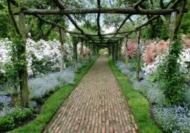 Westbury Botanical Gardens Westburry Gardens New York Mrv The Buzz Mobilerving