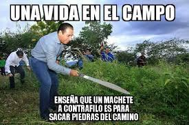 Ramirez Meme - meme eduardo ram祗rez noticias
