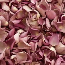 Dried Roses Lavender Freeze Dried Rose Petals Petals U0026 Roses