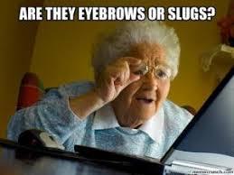 Bushy Eyebrows Meme - eyebrow jokes kappit