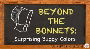 Buggy Bench Coupon Code Custom Archives Page 2 Of 7 Amish Wisdom