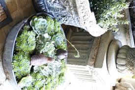 Galvanized Containers For Gardening Galvanized Container Buckets With Lids Containers For Plants