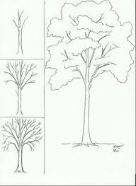 plant sketches how to draw and paint pinterest sketches