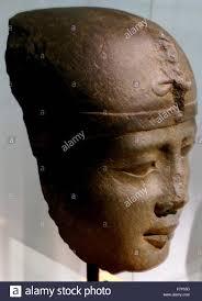 native plants of egypt of egyptian pharaoh stock photos u0026 of egyptian pharaoh stock