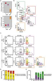 reconstructing human pancreatic differentiation by mapping