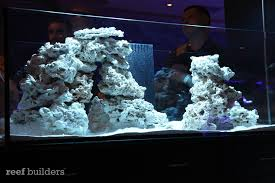 Pacific Aquascape The Reefstock 2010 Aquascaping Design Lessons Learned And A