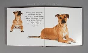 dog photo album rhodesian ridgeback archives san diego pet photographer allison