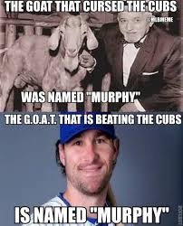 New York Mets Memes - 36 best memes of the new york mets completing a sweep of the chicago
