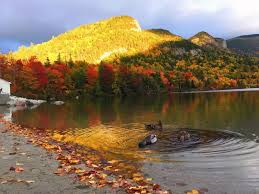 New England Foliage Map by 7 Day New England Fall Foliage Tour White Mountain Route Boston