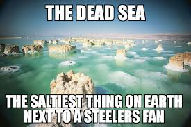 Pittsburgh Steelers Suck Memes - pittsburgh steelers suck memes home facebook