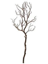 manzanita tree 38 manzanita tree branch brown pack of 6 home