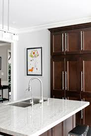 Dark Cabinet Kitchen Designs by Am Dolce Vita New Kitchen Art