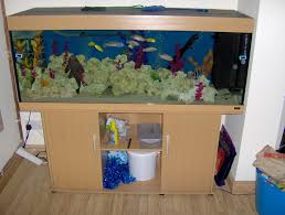 fish tank 48 shocking fish tank free to good home picture ideas