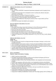 business analyst resume exles project business analyst resume sles velvet