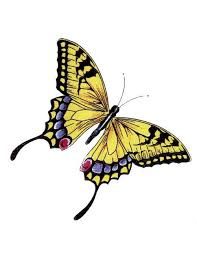 28 best yellow butterfly tattoo on foot images on pinterest