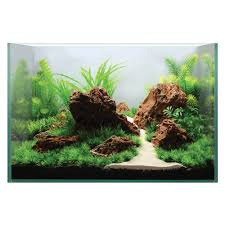 Aquarium Aquascapes Hugo Kamishi Aquarium Aquascaping Decor Display Kit 1