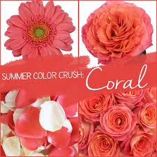 coral color summer color crush coral fiftyflowers the blog