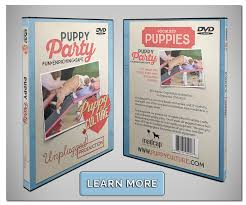 enrichment effect u2013 puppy culture