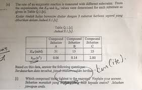 whale evolution data table answer key biology archive january 11 2018 chegg com