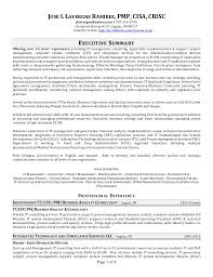 It Risk Management Resume It Professional Resume